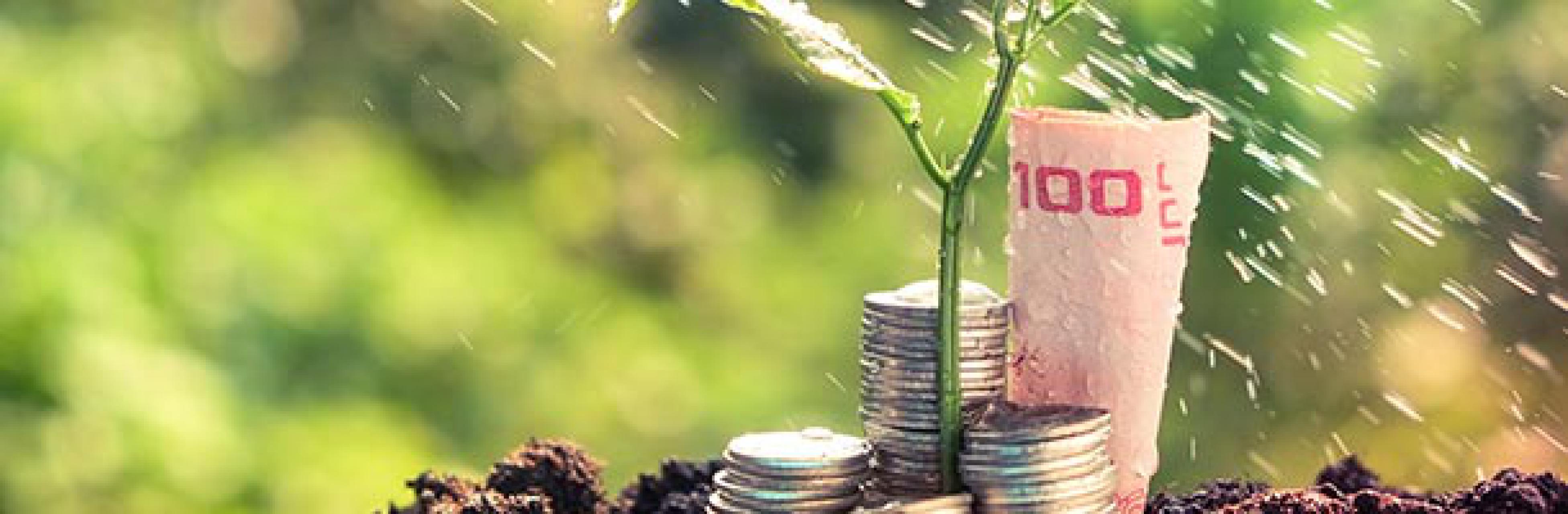 Calcolare il valore della CSR
