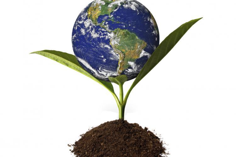 CSR sistemica