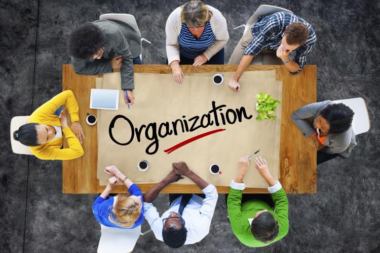 Modelli di organizzazione aziendale Cover