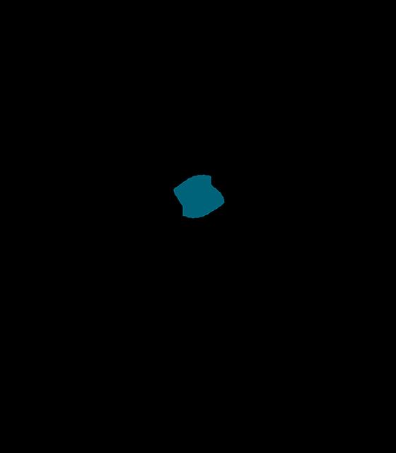Logo Synetich